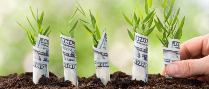 earn money online - how to