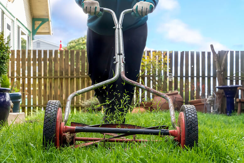 get paid today by mowing lawns
